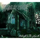 Midnight in the Labyrinth (Ltd.)