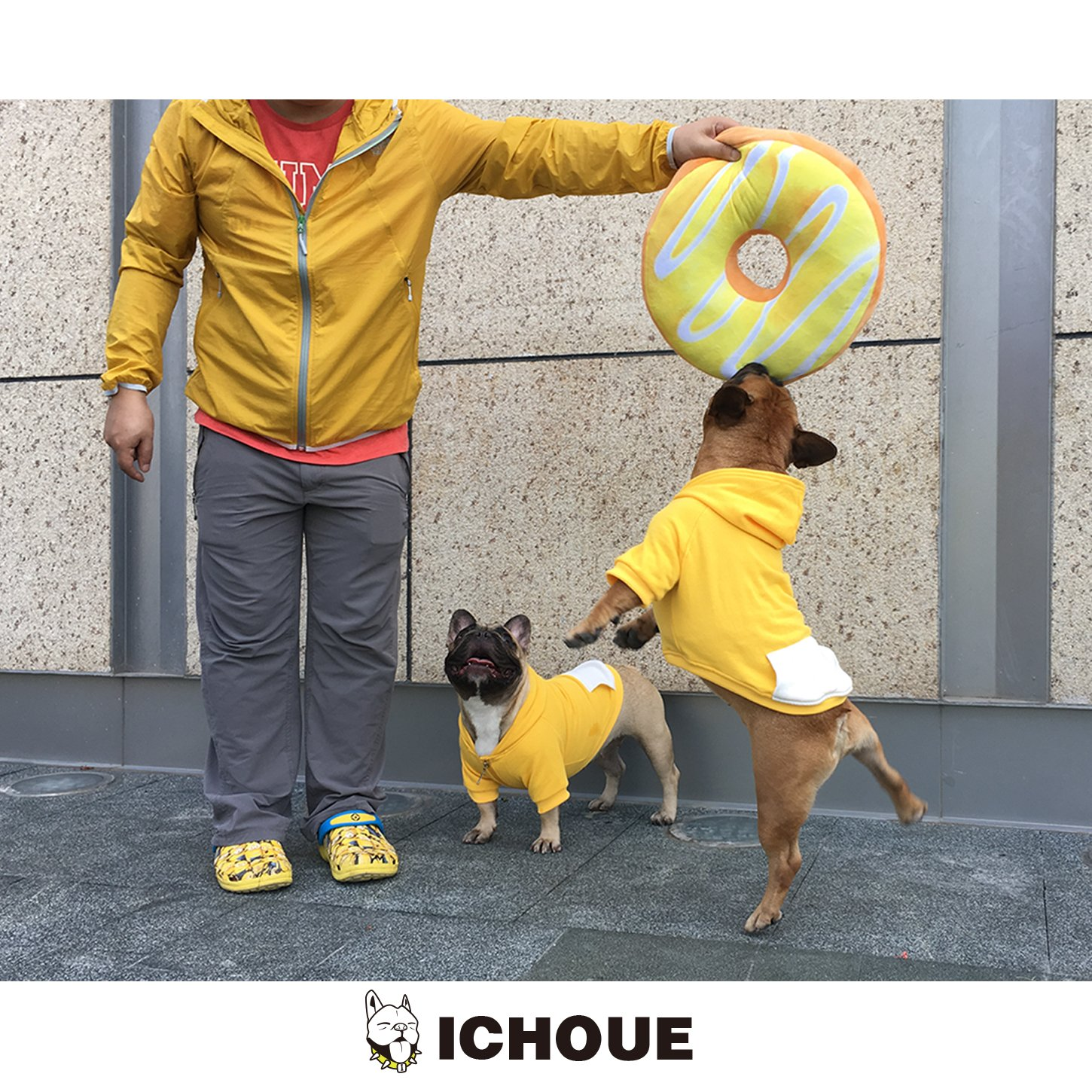 iChoue Pets Dog Clothes Hoodie Hooded French Bulldog Costume Pullover Cotton Winter Warm Coat Puppy Corgi Clothing - Yellow/Size M by iChoue (Image #8)