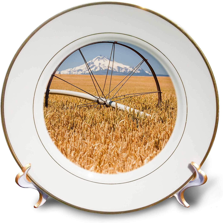 3dRose Wheatfield, Mt. Jefferson in The Background, Eastern Oregon - Plates (cp_332043_1)