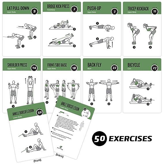 NewMe Fitness - Tarjetas de ejercicios para banda de resistencia - Extragrandes con 6 entrenamientos eficaces para hacer en casa; grandes, ...