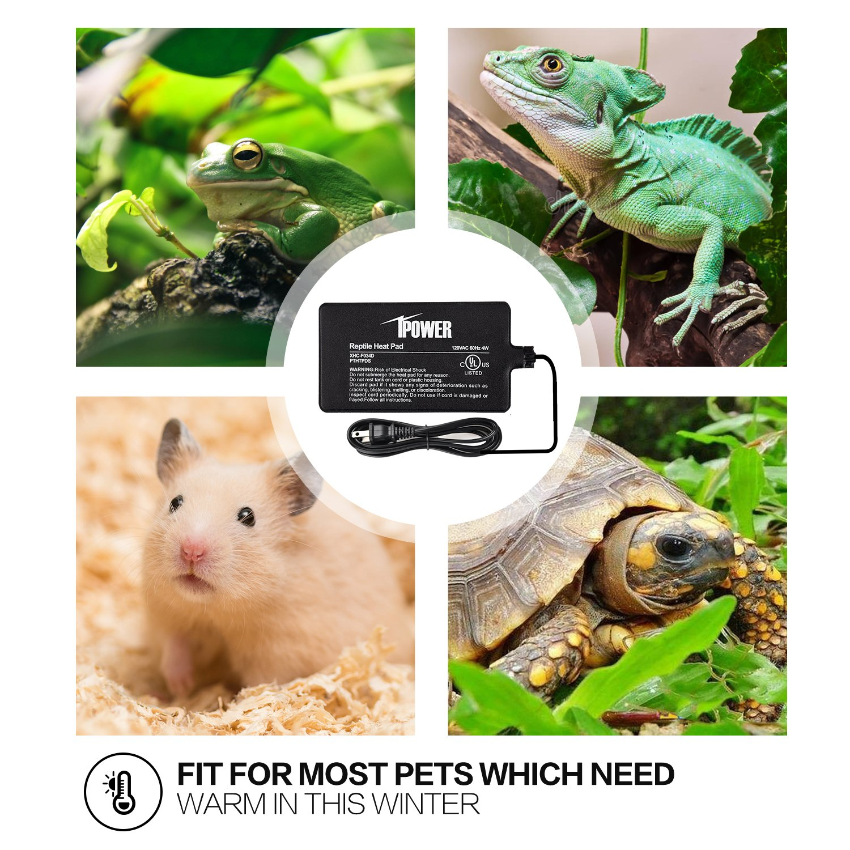 iPower 8 by 12-Inch 16 Watt Reptile Heat Pad Under Tank Terrarium Heater Heat Mat for Small Animals by iPower (Image #6)