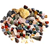 BEST rock collection for lighting the fire of discovery in young scientists. Huge! 3 lbs of Gems, Minerals, Fossils. The ONLY kit with a Megalodon Shark tooth & LARGER geodes for exciting fun!
