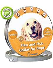 Vienapoli Adjustable Flea and Tick Collar for Small, Medium and Large Dogs - Waterproof -Anti Flea Collar Treatment for Dogs - 8 Months Effectiveness Protection - Natural Essential Oil (Grey)
