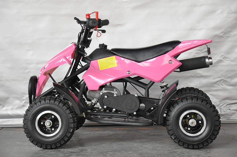 MINI QUAD 49CC ATV013 RAPTOR/miniquad, mini quad niños, quad, con motor de 2 tiempos 49cc.: Amazon.es: Coche y moto