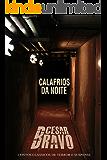 Calafrios da Noite - 15 contos de suspense e terror