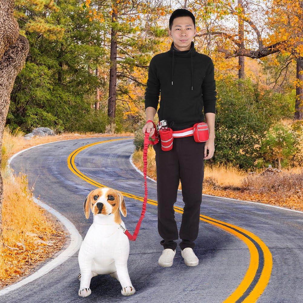 Rosso Fdit Guinzaglio Cane per Correre Mani Libere Guinzaglio da Jogging Running Dog Leash Ploopy Guinzaglio per Cani con Elastico Guinzaglio per Jogging Correre con Mani Libere Passeggiare