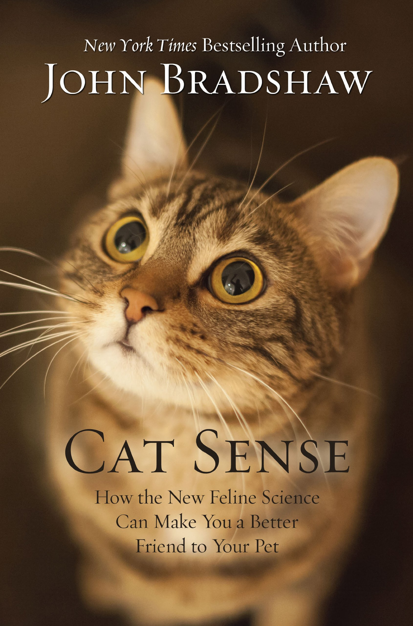 Download Cat Sense: How the New Feline Science Can Make You a Better Friend to Your Pet (Thorndike Press large print nonfiction) pdf