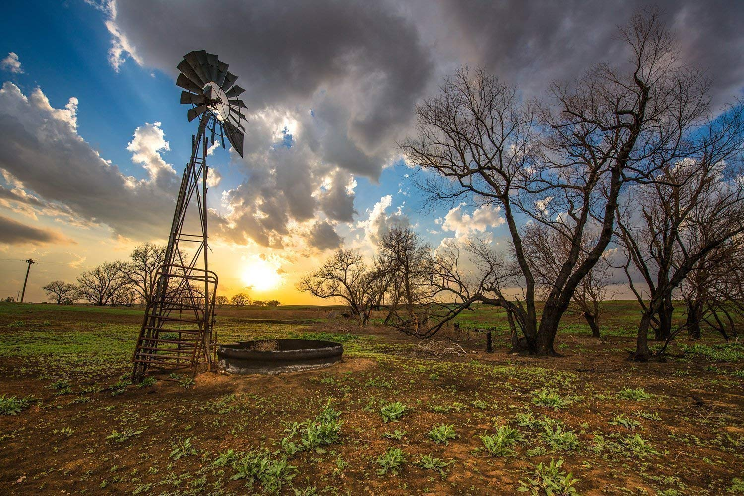 Western Wall Art Photography Print - Picture of Windmill and Charred Trees at Sunset in Southern Kansas Country Home Decor 5x7 to 30x45