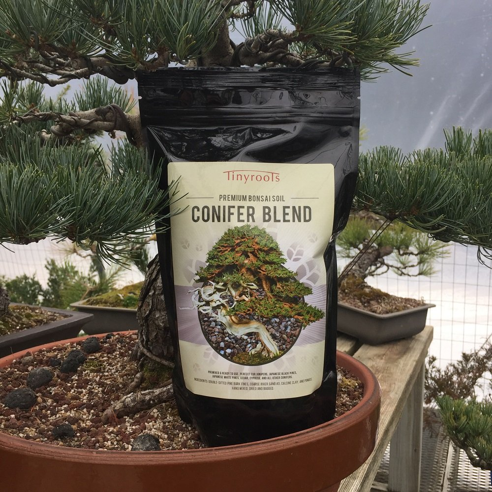 Conifer Bonsai Tree Topsoil Blend – Two Quarts – Tinyroots Brand.  100% Organic and All-Natural Formulated For Juniper Japanese Black Pine White Pine Cedar Cypress And Other Conifers Akadama And 28-Mineral FRIT Mineral Additives