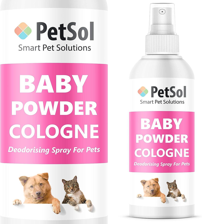 PetSol Baby Powder Colonia Perfume para Perros - Larga duración Perro Desodorizador Spray - Refresca, Condiciones y desodoriza (240ml) Cruelty Free Perfume para Perros, Gatos y Mascotas: Amazon.es: Productos para mascotas