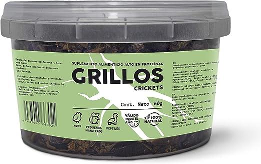 Feedect Grillo Deshidratado (60g) - Complemento Alimenticio Rico en Proteínas - 100% Natural - Comida para Pájaros, Aves de Corral, Tortugas, Saurios, ...