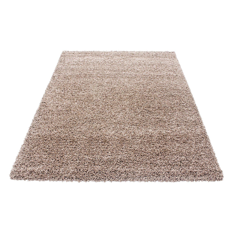 HomebyHome Shaggy Hochflor Langflor Einfarbig Günstig Teppich für Wohnzimmer mit Oeke Tex Zertifiziert 14 Farben und 17 Grössen, Größe 200x290 cm, Farbe Terra B01M8JKDY5 Teppiche