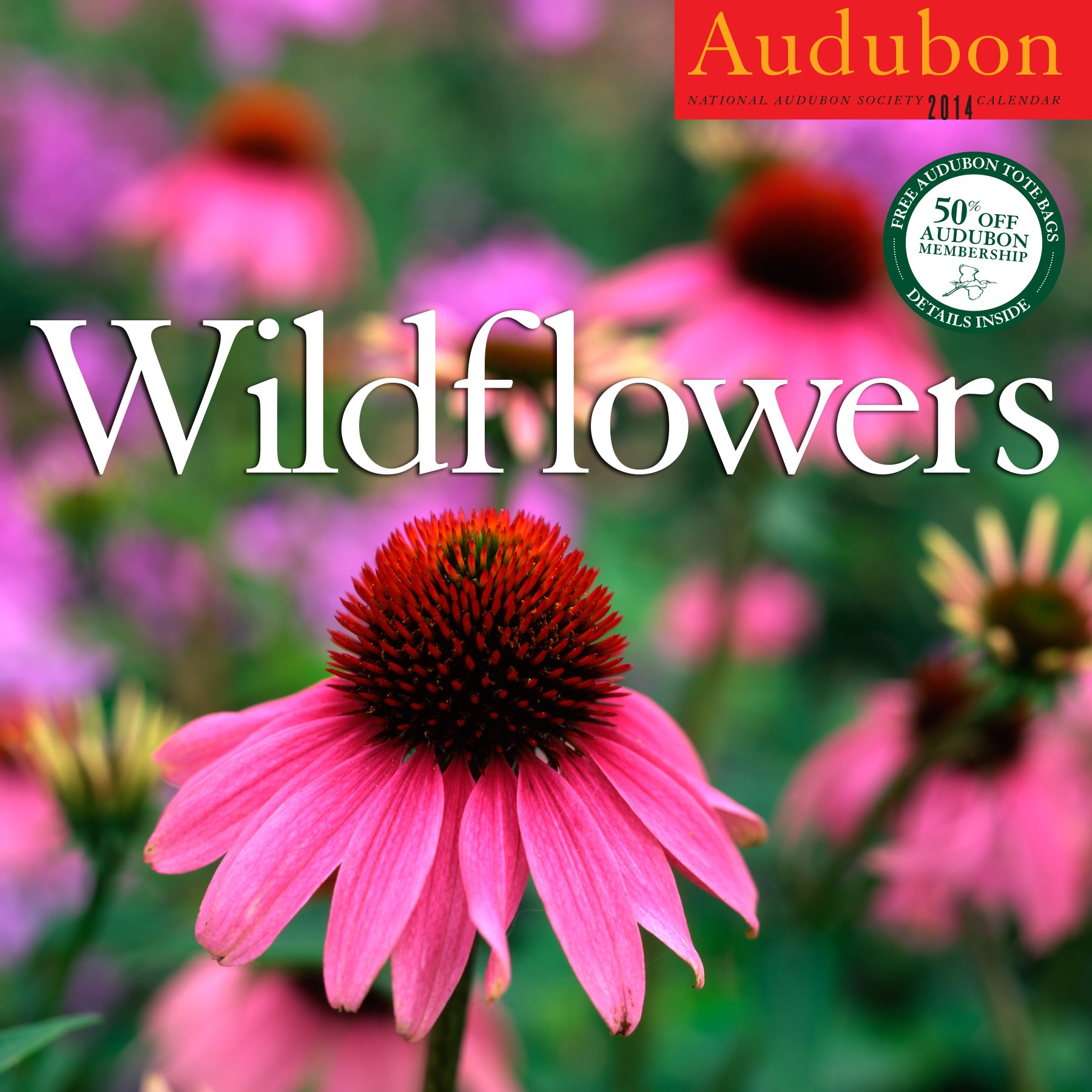 Audubon Wildflowers Calendar 2014: National Audubon Society: 9781579655204:  Amazon.com: Books
