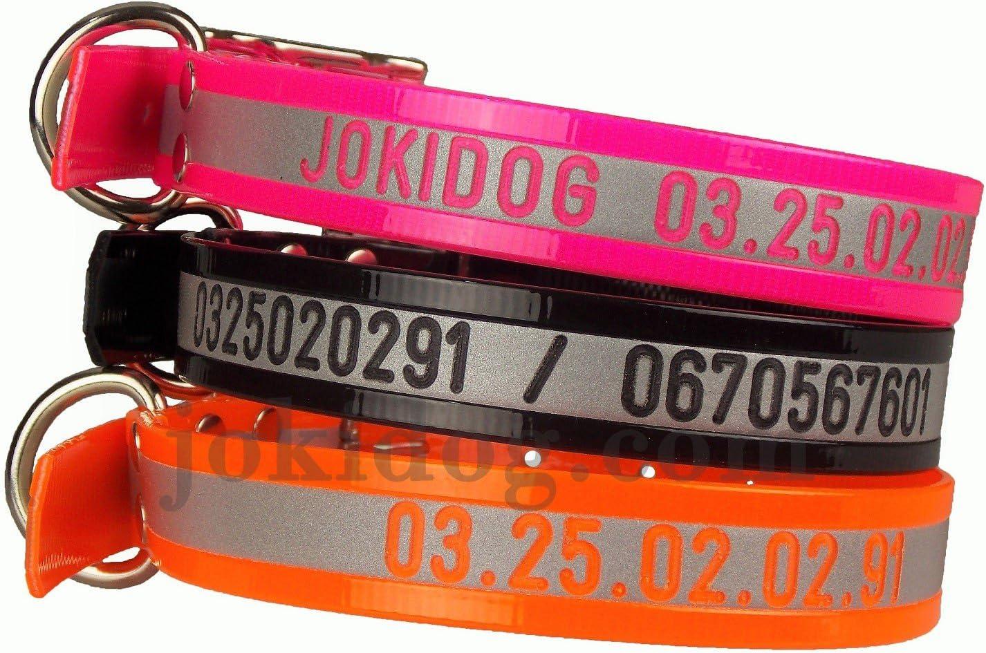 collier pour chien en biothane