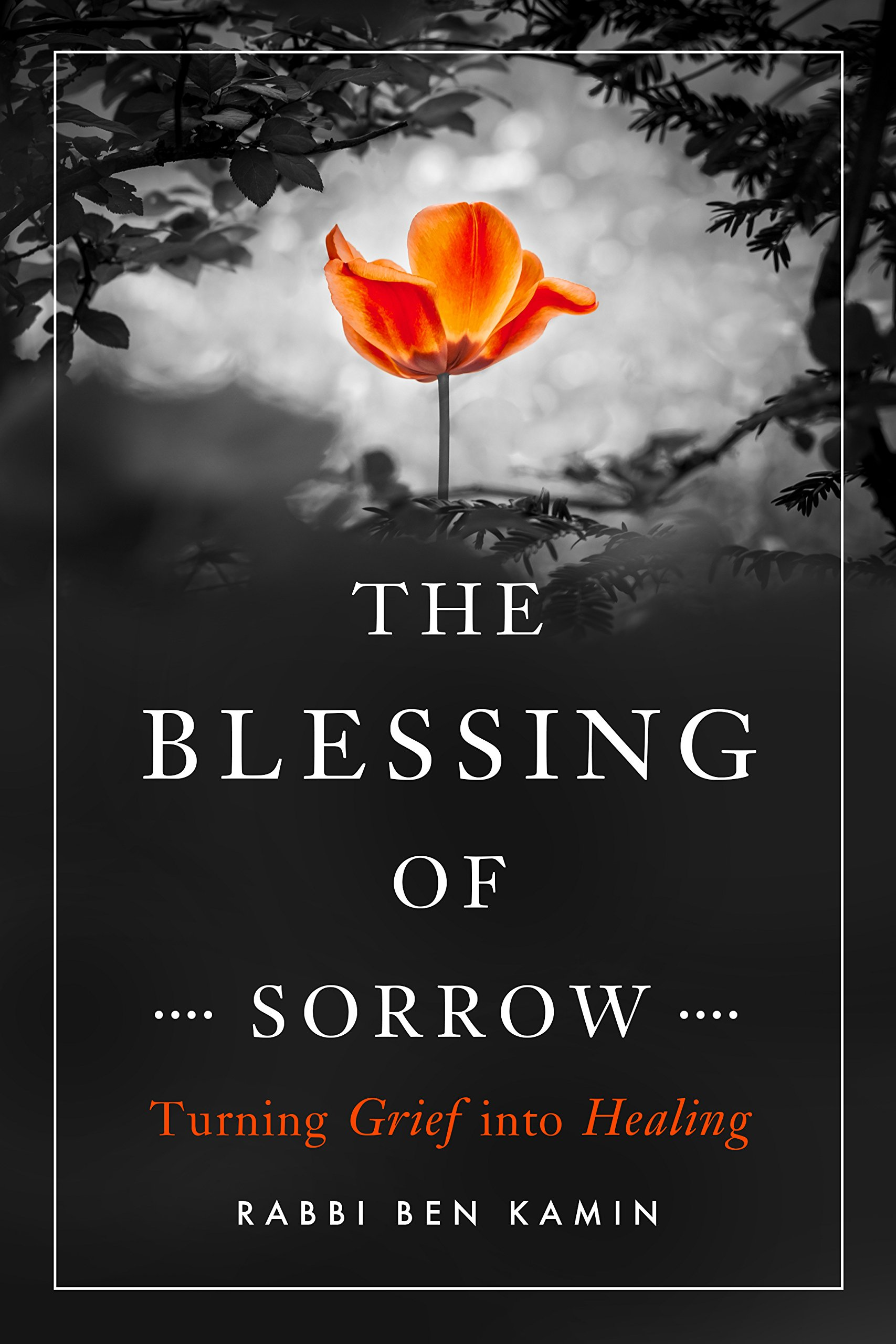 The Blessing of Abuse (My Souls Journey Book 1)