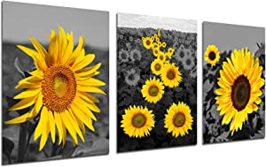 Sunflower Paintings Kitchen Wall Decor - Modern Art Black Yellow Flower Painting Home Office Daisy Floral Wall Decorations Botanical Theme Primitive Scenery Women Bedroom Bathroom Unframed 12X16 inch