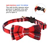 KUDES 2 Pack/Set Cat Collar Breakaway with Cute Bow