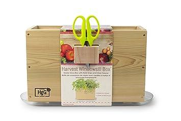 Amazon Com Architec Homegrown Gourmet Window Box Cedar Grow Box