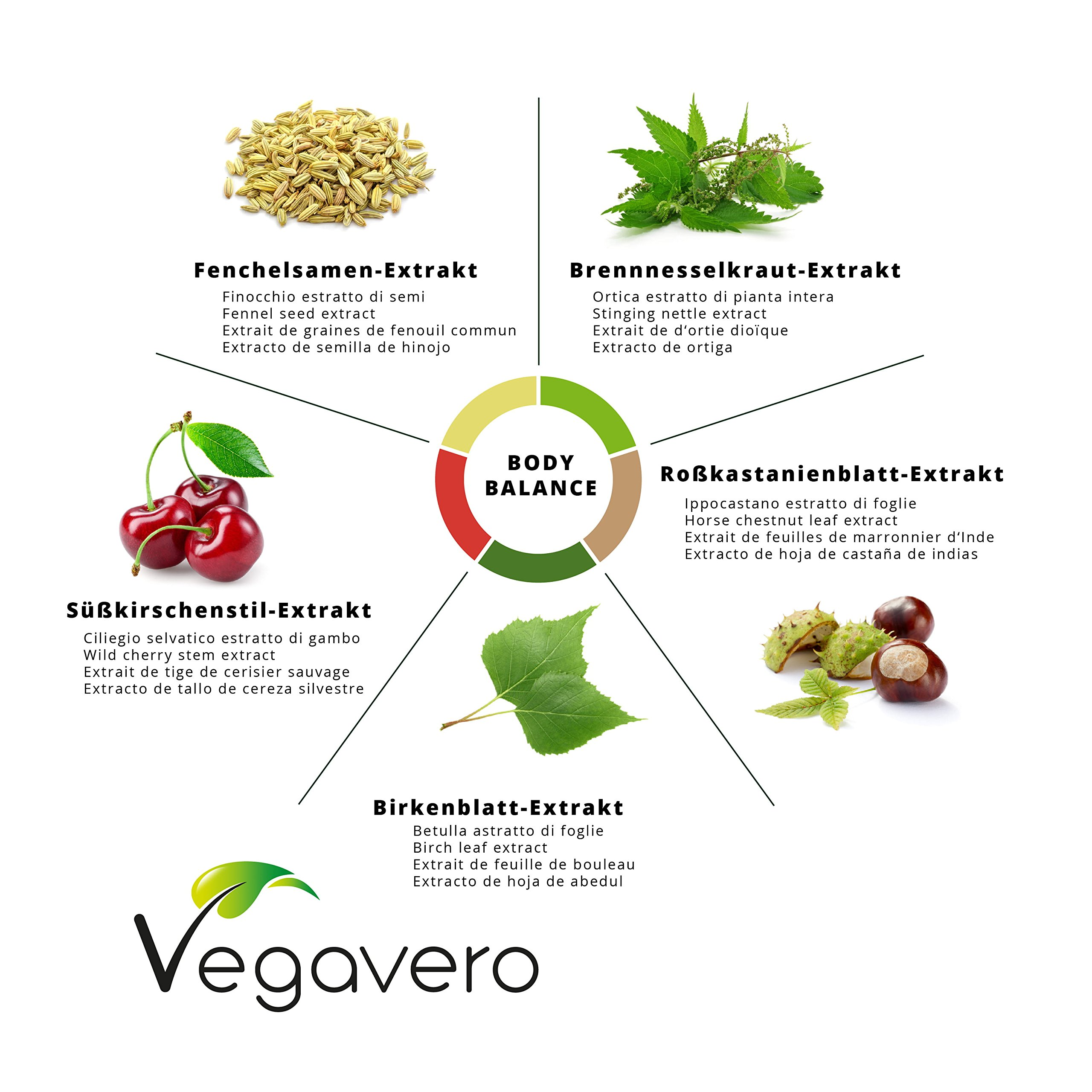 NEW: Body Balance Complex   Natural Diuretic, Digestive, Detox & Cleanse Blend   Prevent Water Retention & Eliminate Toxins   Birch Leaves, Nettle, Fennel Seeds, Chestnut Leaves & Wild Cherry Stems   120 Capsules   VEGAN by Vegavero