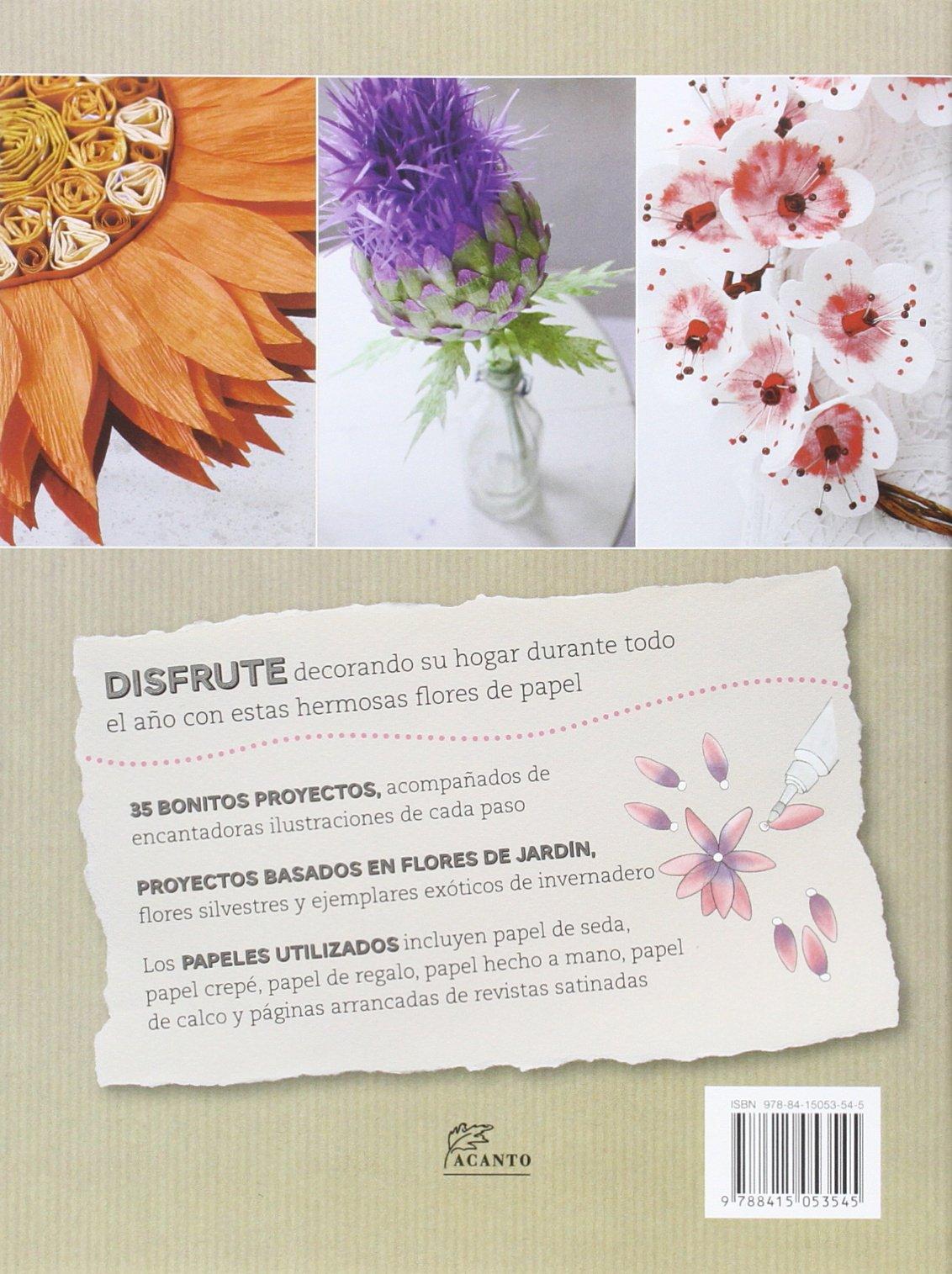 Flores de papel: 35 Bonitos proyectos paso a paso: Amazon.es: Denise Brown, Gerardo Di Masso Sabolo: Libros