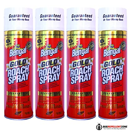 Amazon.com : Bengal Gold Roach Spray 4-Pack Model #92464 (4) BEST ...