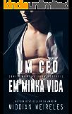 Um CEO em minha vida (Homens Irresistíveis Livro 1)