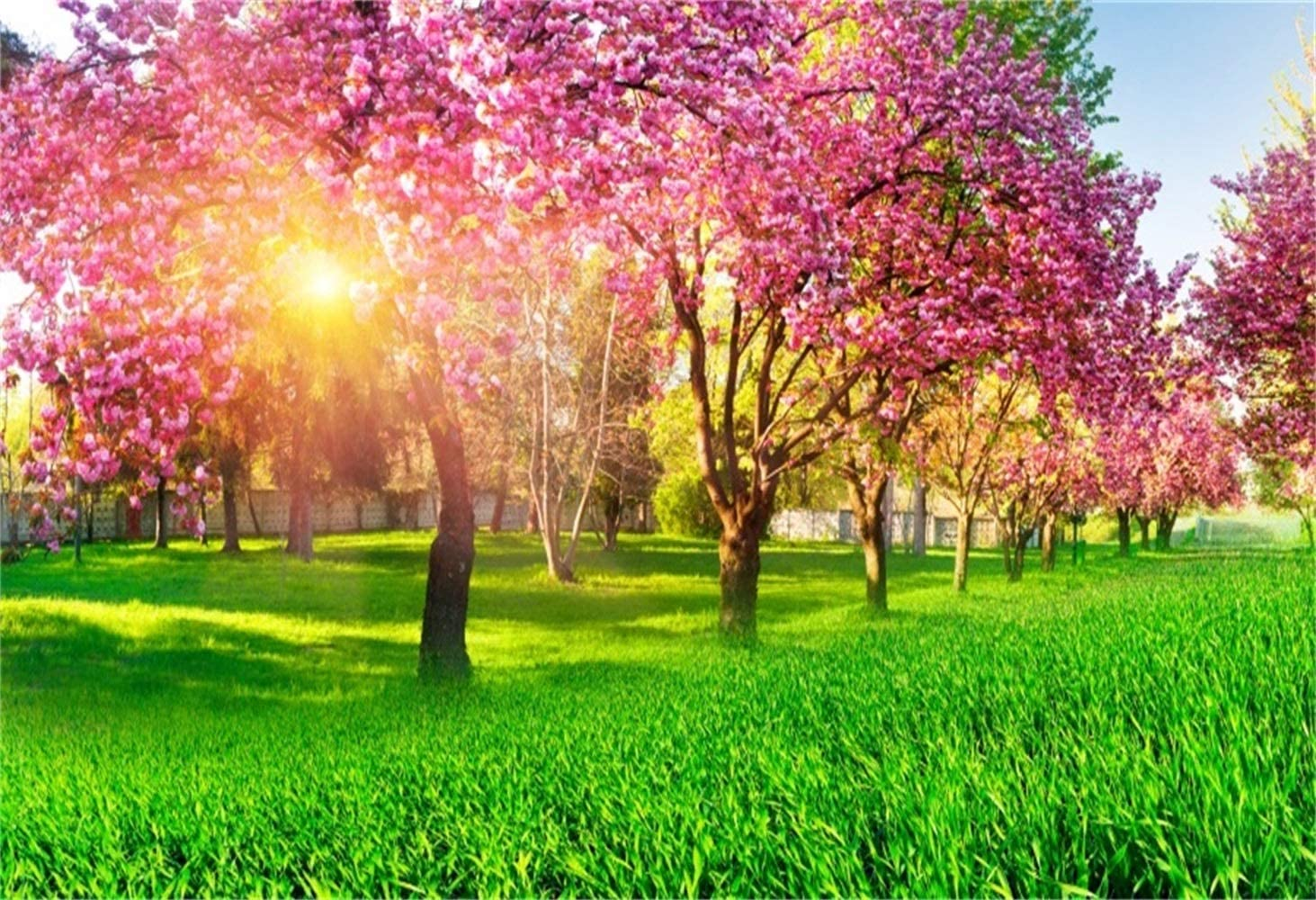 10x6.5ft Afternoon Blooming Trees Backdrop Polyester Setting Sun Vibrant Garden Purple Blossom Trees Green Grassland Photography Background Wedding Photo Booth Bride Portrait Shoot Spring Scenic