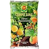 COMPO SANA Zitruspflanzenerde mit 8 Wochen Dünger für alle Zitruspflanzen und mediterranen Pflanzen, Kultursubstrat, 10 Liter