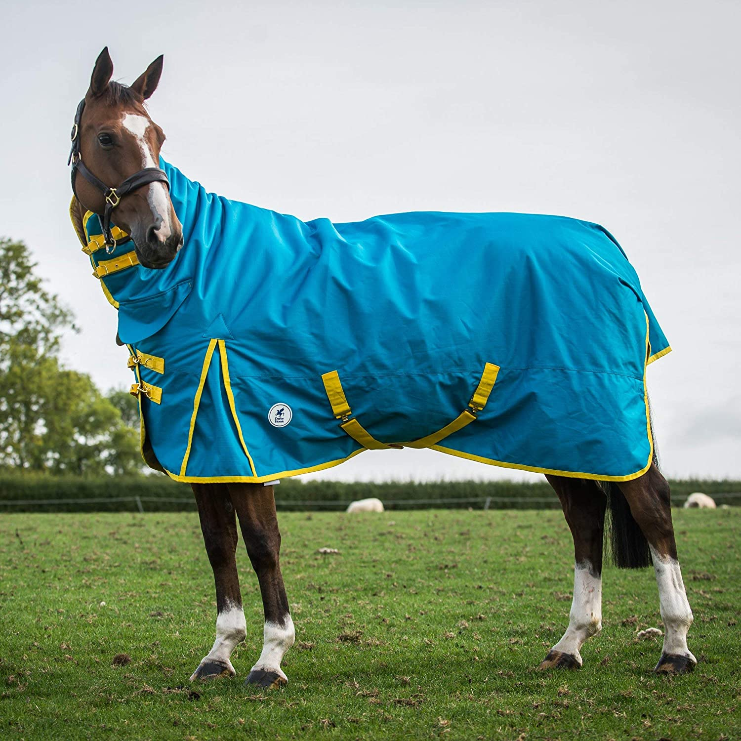 bluee Jewel Freesia 6ft3 bluee Jewel Freesia 6ft3 Derby House Pro Lightweight Combo Turnout Rug