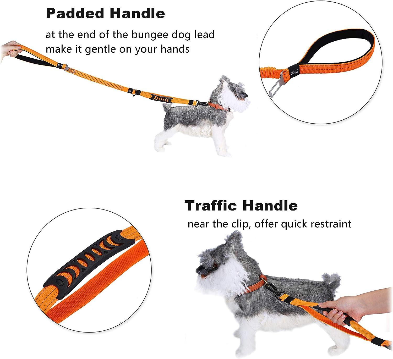 HAPPY HACHI Correas de Adiestramiento para Perros Nylon Correa Reflectantes Elástica para Perros Medianos Grandes con 2 Manijas Blandas Cinturón de Seguridad para Perros (longitud 110-150 cm, Naranja): Amazon.es: Productos para mascotas