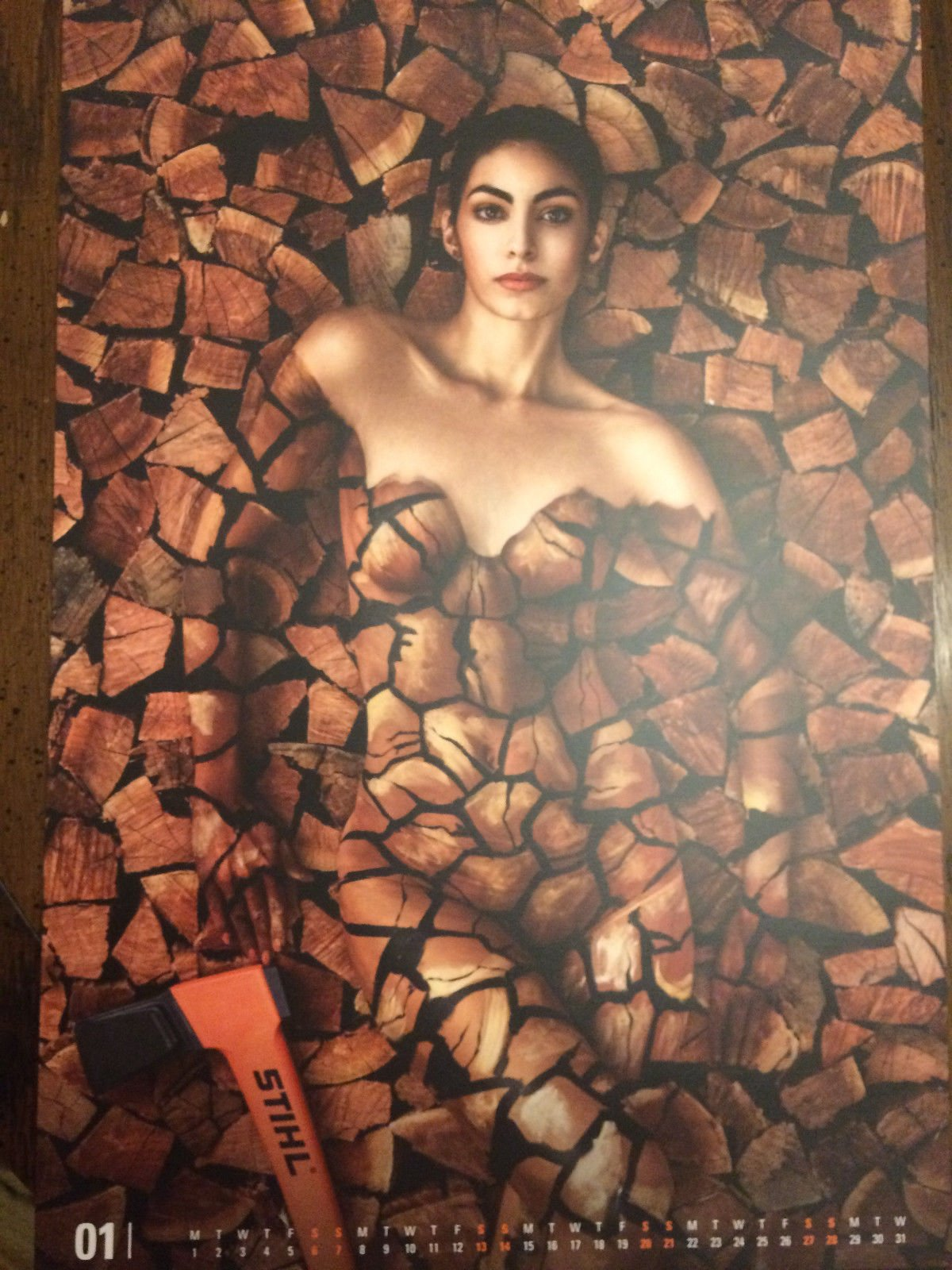 Calendario Stihl.Stihl 2018 Arborist Calendar With Women And Man Stihl