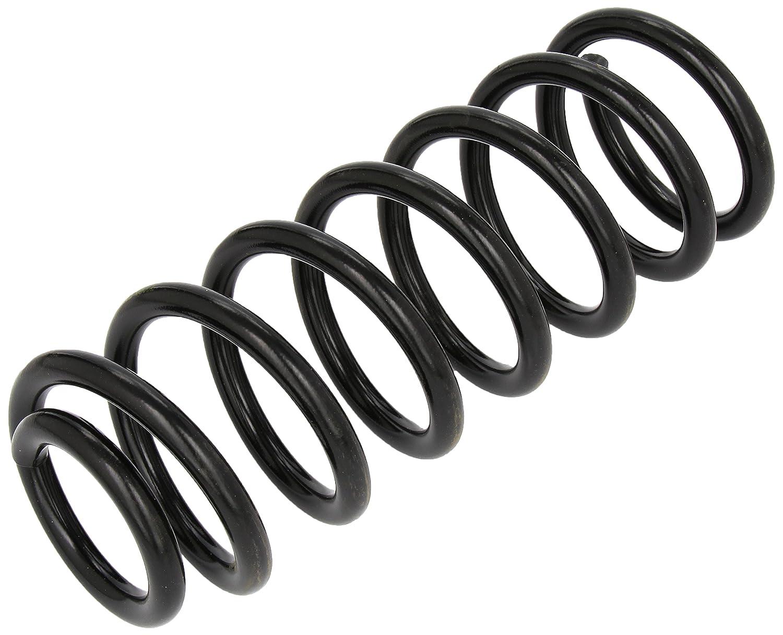 lesjofers 4204203 Coil Spring Rear