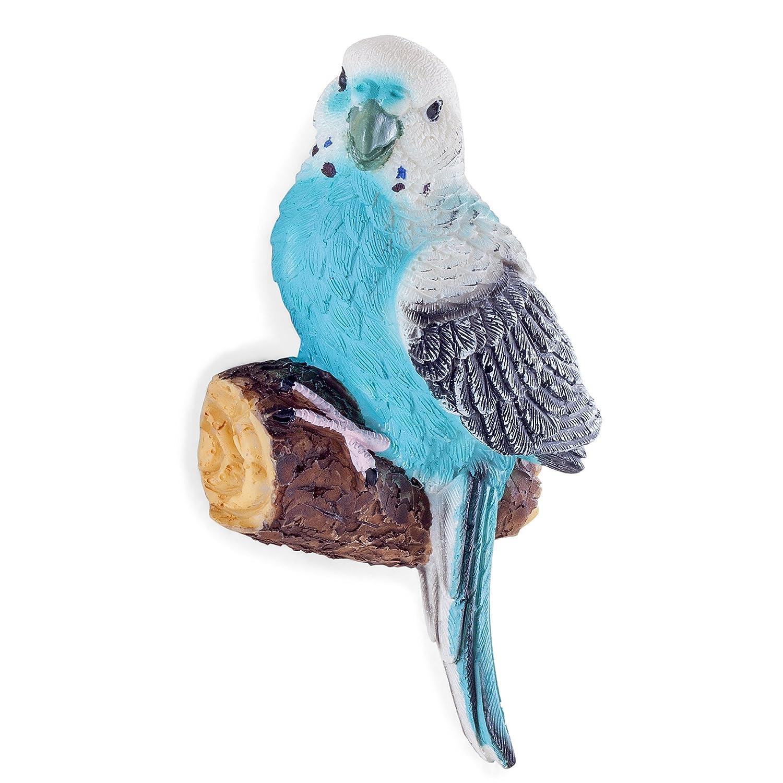 set of 4 wall mountable coloured tropical parrot u0026 parakeet bird