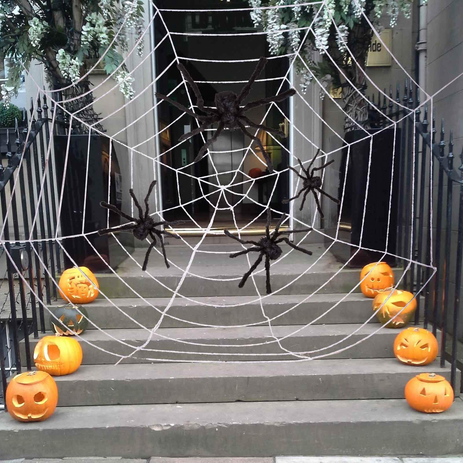Four Halloween Realistic Hairy Spiders Set, Valuable Halloween Props, Halloween Spider Set for Indoor and Outside Decorations by JOYIN (Image #4)