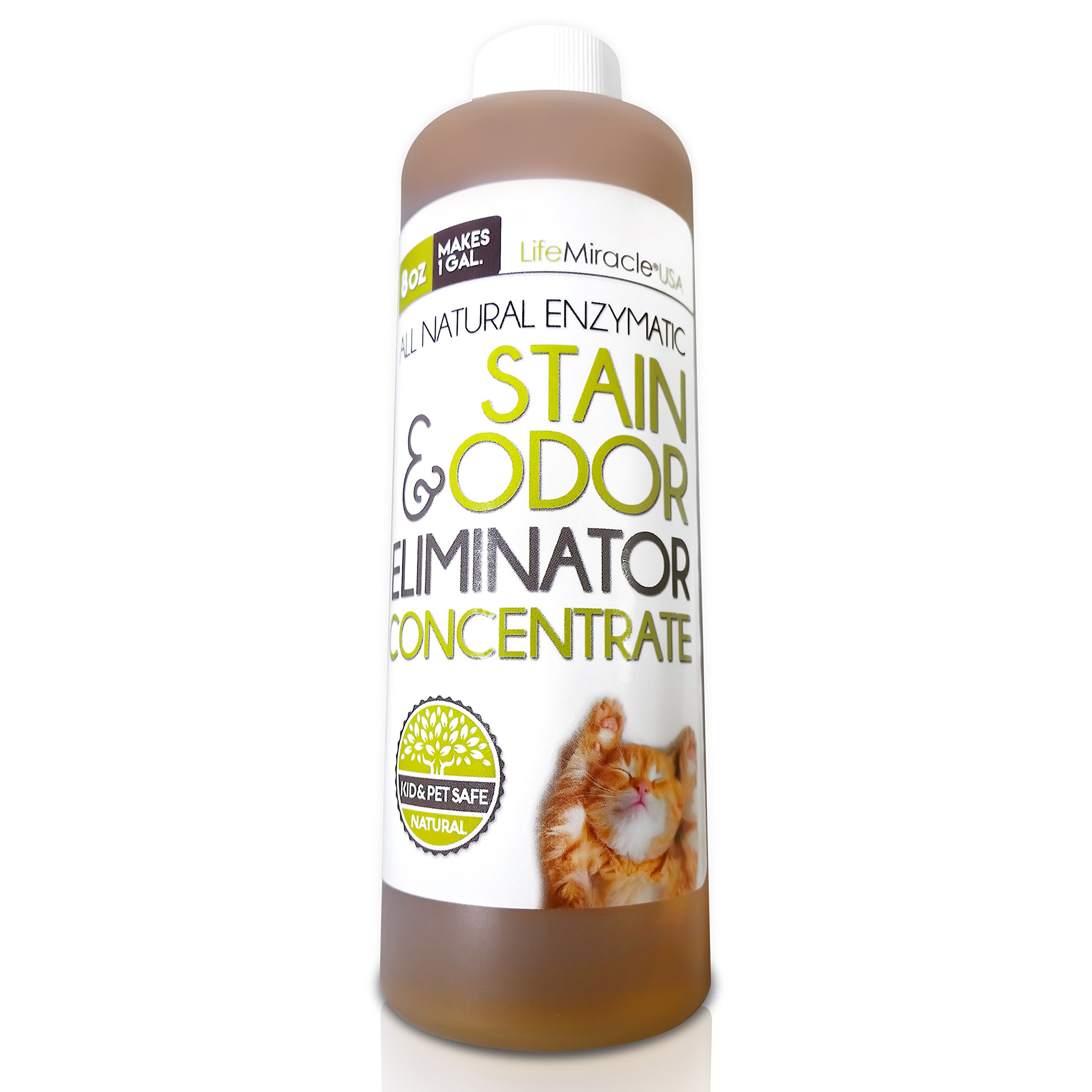 Enzyme Cleaner CONCENTRATE. Safe, All Natural Carpet Cleaning and Laundry Stain Remover & Odor Neutralizer. All In One, All Surface Non-Toxic Cleaner Concentrate Makes a GALLON (128 oz) Of Product