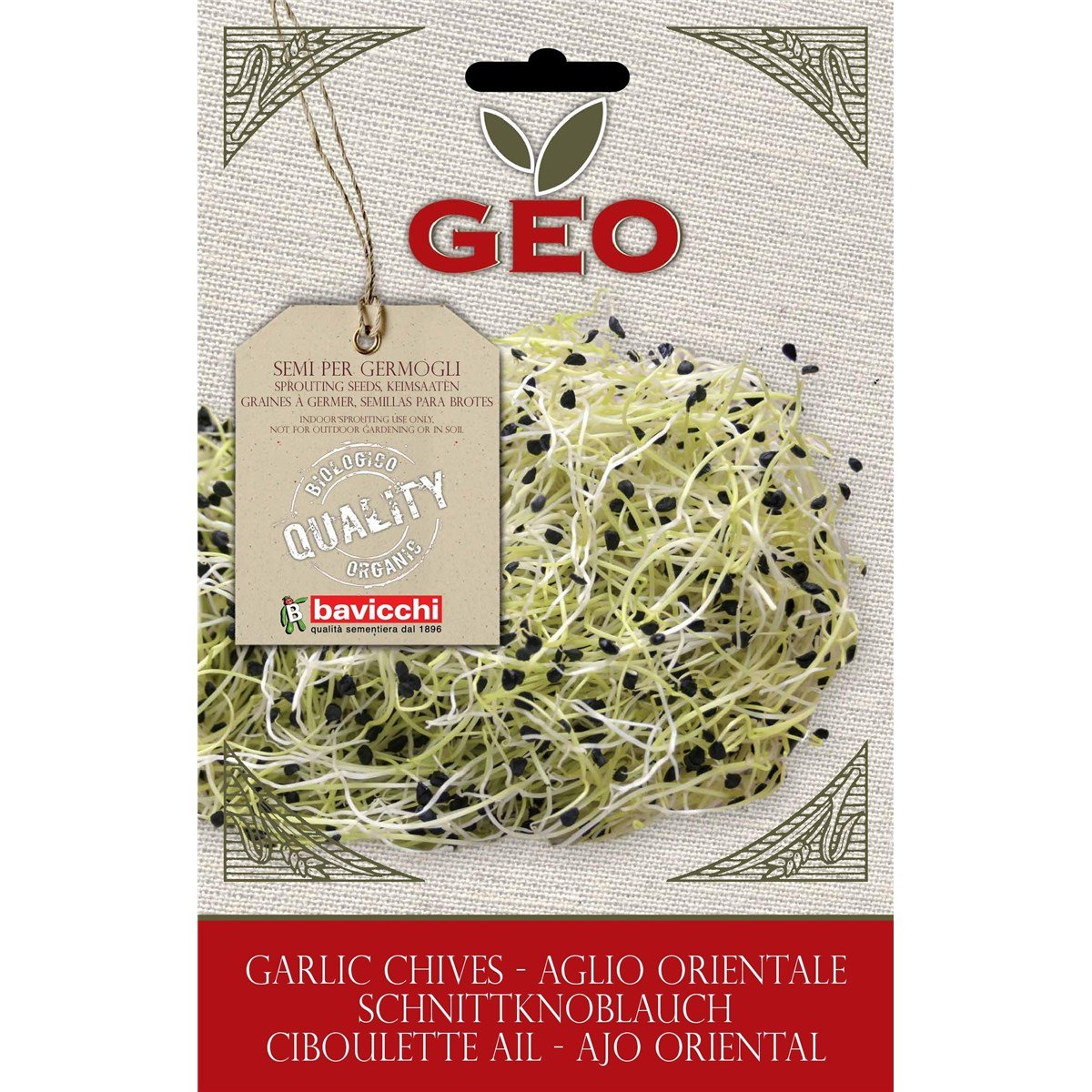 Geo ZAG0503