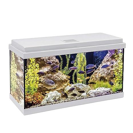ICA KDI60B Kit Aqua-Led 60 con Filtro Interior, Crema