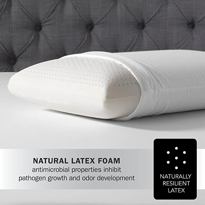 Latex Foam Pillow by Simmons Beautyrest