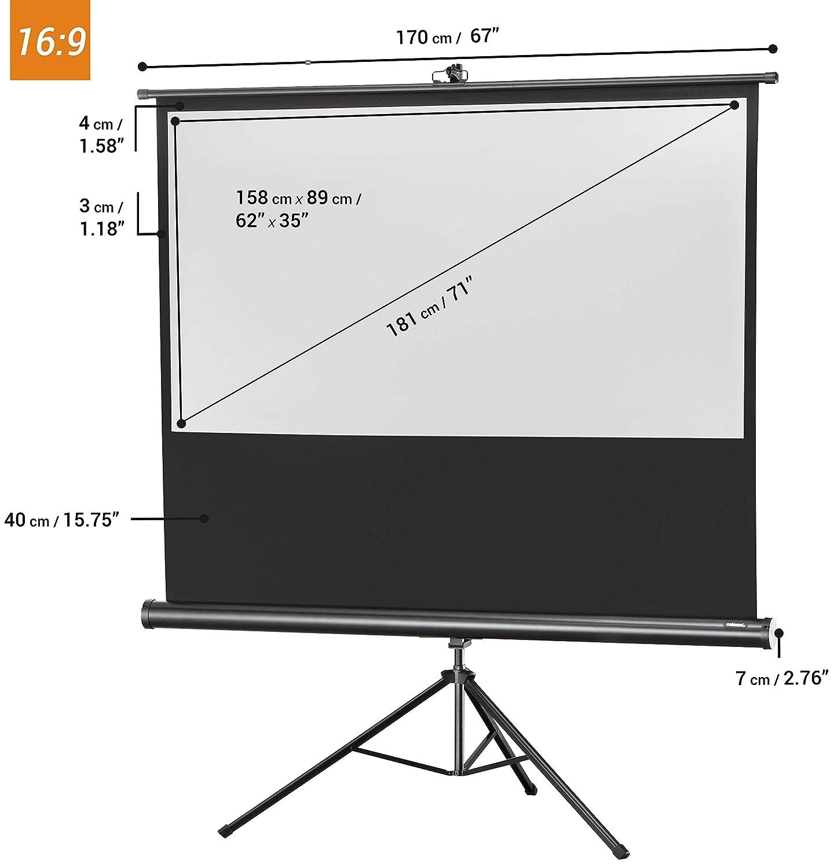 133 x 133 cm celexon tragbare Beamer-Leinwand mit vormontiertem St/änder mobile Stativ-Leinwand mit Tragegriff Schwarz Economy Gain 1,0 1:1