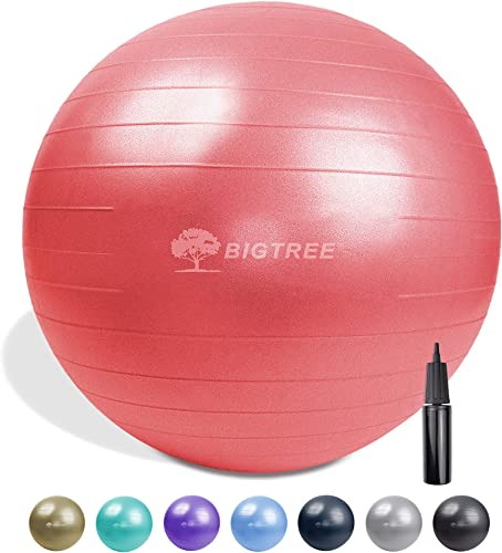 Bigtree Yoga Ball Exercise Fitness Core Stability Balance Strength Anti-Burst Heavy Duty Red 29.5 75cm