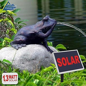 Fontaine de jardin fontaine solaire pompe solaire pour étang ...