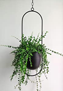 RISEON Boho Black Metal Plant Hanger,Metal Wall and Ceiling Hanging Planter, Modern Planter, Mid Century Flower Pot Plant Holder, Minimalist Planter for Indoor Outdoor Home Decor (Style B)