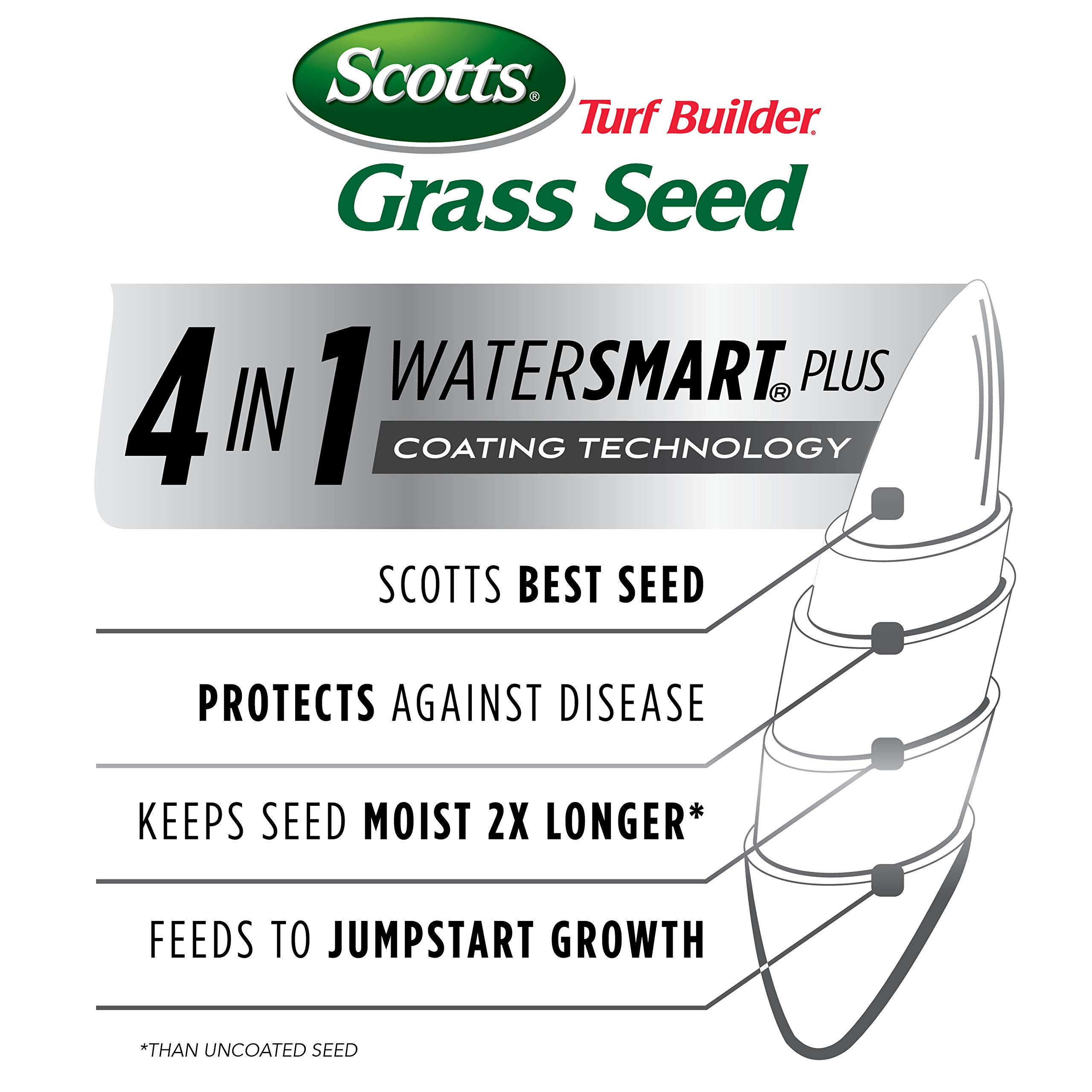Scotts Turf Builder Grass Seed - Southern Gold Mix for Tall Fescue Lawns, 20-Pound (Sold in select Southern states) by Scotts (Image #3)