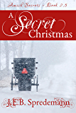 A Secret Christmas: Amish Secrets