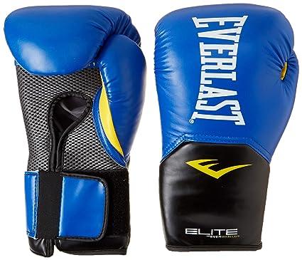 Everlast Pro Style Elite V2 Training Boxing Gloves Bag Gloves
