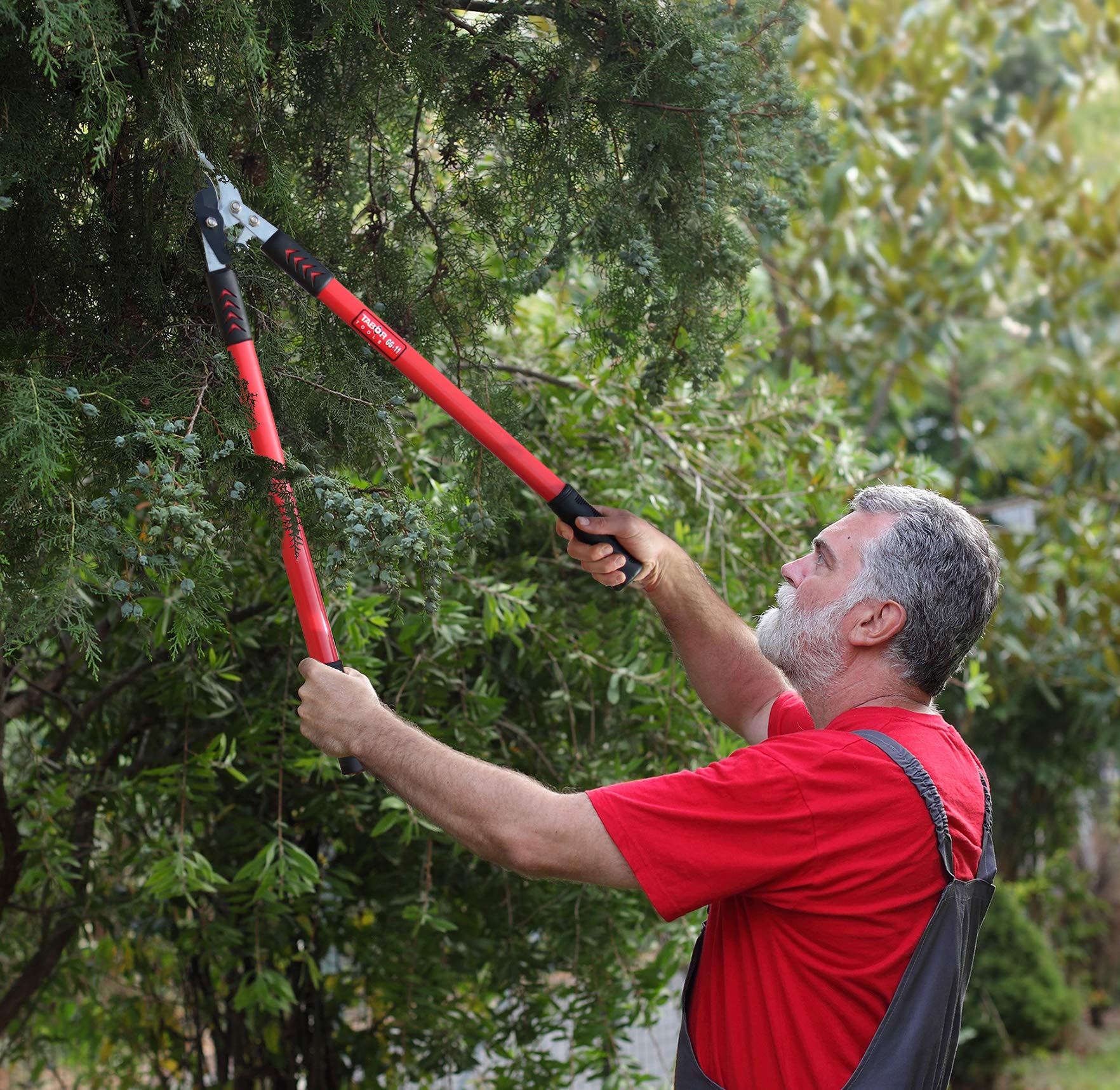 TABOR TOOLS GG11 Professional Compound Action Bypass Lopper, Chops Thick Branches with Ease, 1 3/4 Inch Clean-Cut Capacity, 30-Inch Tree Trimmer Featuring Sturdy Extra Leverage 22-Inch Handles. by TABOR TOOLS (Image #3)