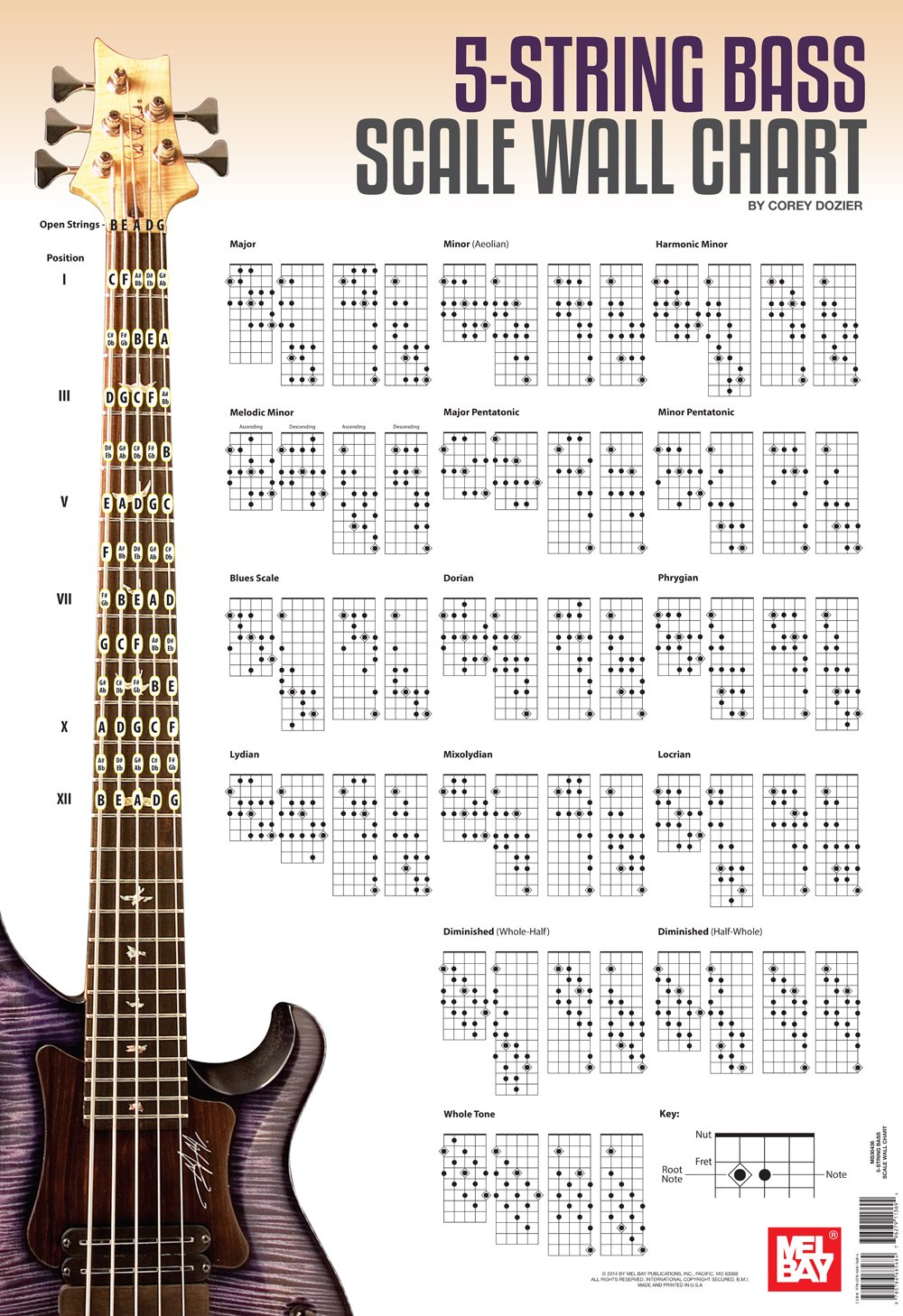 5 String Bass Guitar Scale Wall Chart Amazon Various Books
