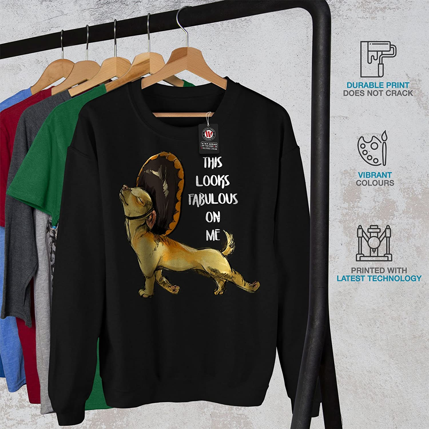 wellcoda Fabulous Dog Mens Sweatshirt Funny Slogan Casual Jumper
