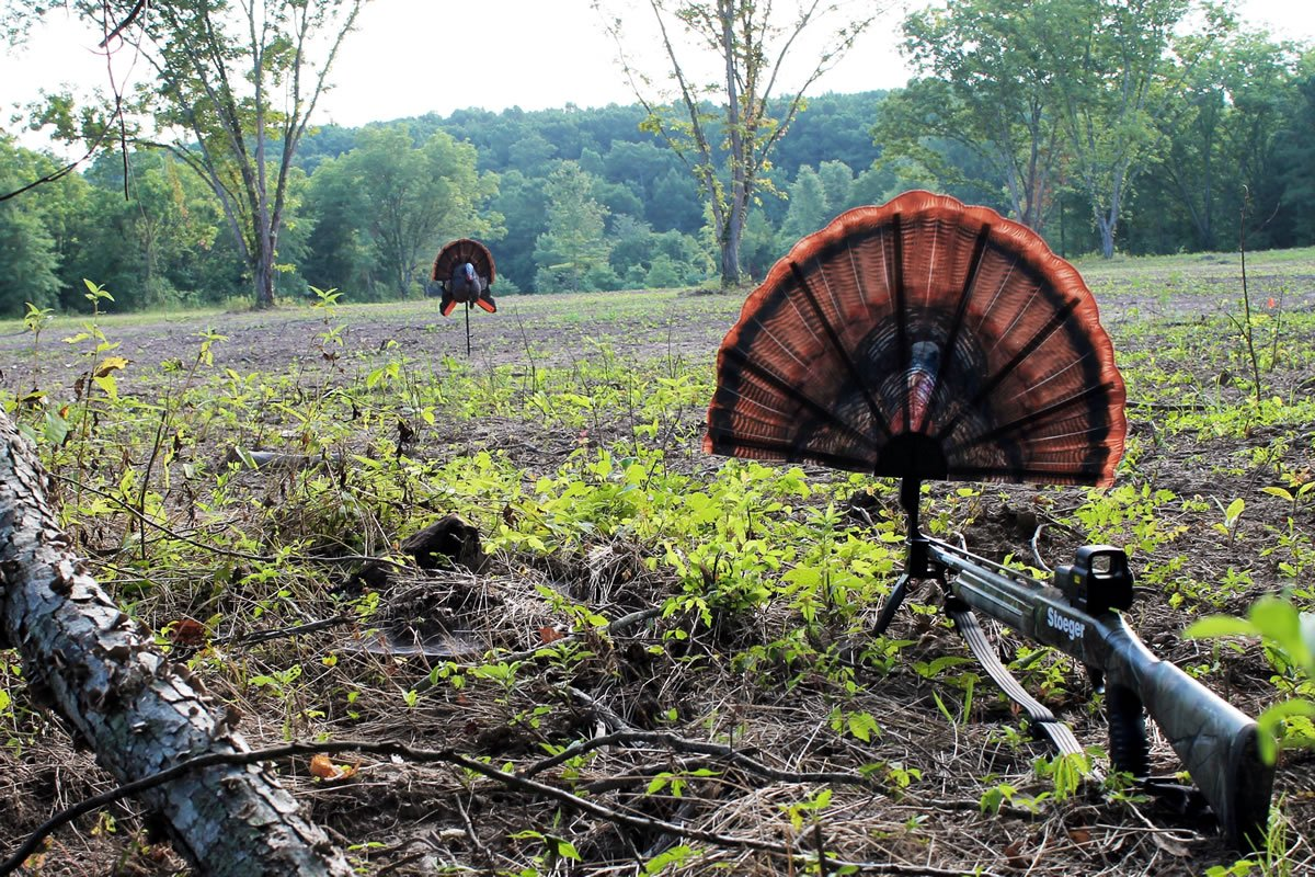 MOJO Outdoors HW2453 Tail Chaser Max Turkey Hunting Decoy by MOJO Outdoors (Image #1)