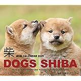 2019ミニカレンダー ドッグズ「柴」 ([カレンダー])